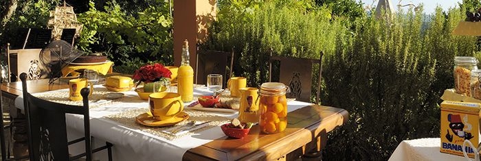 Ota Als In A Bed And Breakfast For Your Vacations With Iha