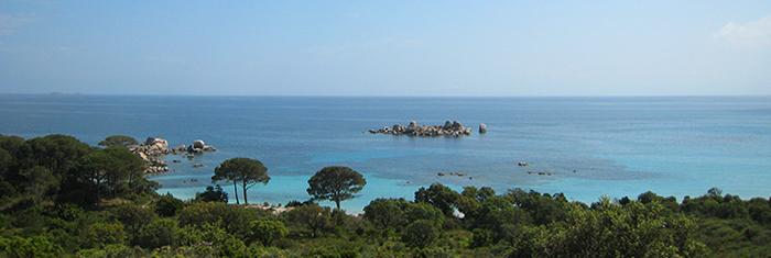 Gites De France Corse Location Corse Plages Palombaggia.